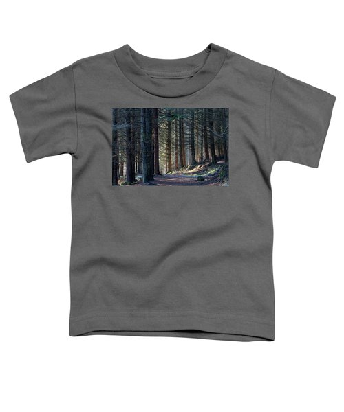 Craig Dunain - Forest In Winter Light Toddler T-Shirt