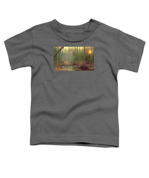 Creek Bed Toddler T-Shirt