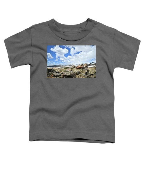 Crest Of Big Horn Pass In Wyoming Toddler T-Shirt