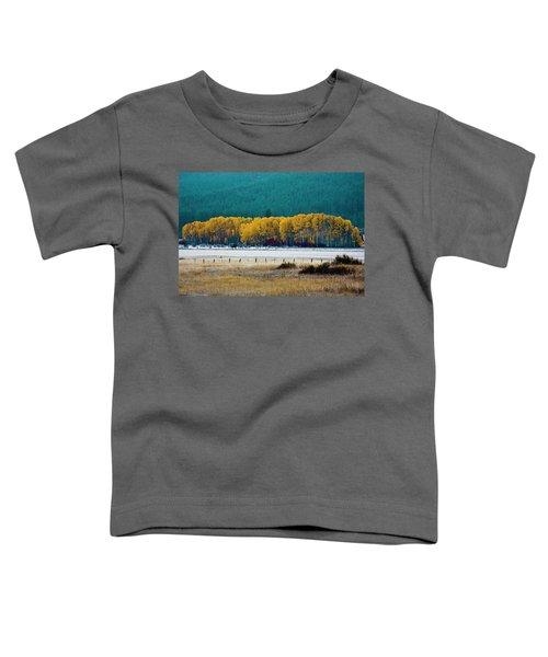 Crisp Aspen Morning Toddler T-Shirt