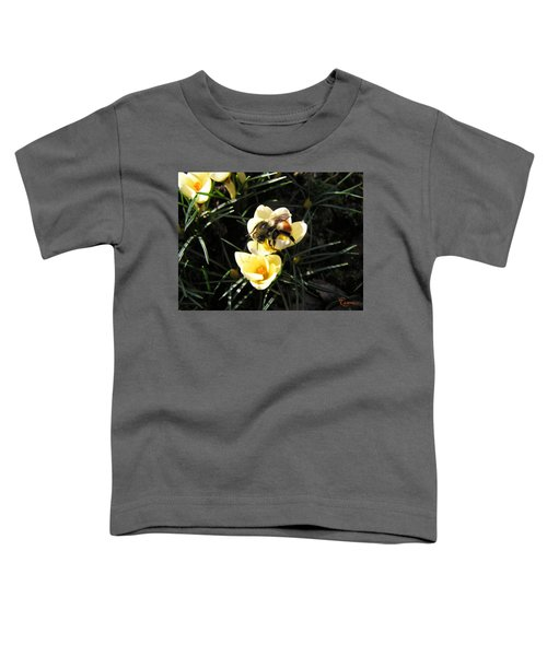 Crocus Gold Toddler T-Shirt