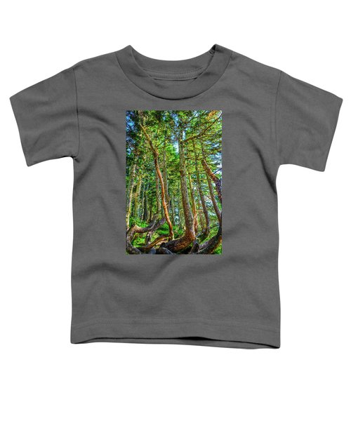 Crooked Trees Of Mt Roberts Toddler T-Shirt