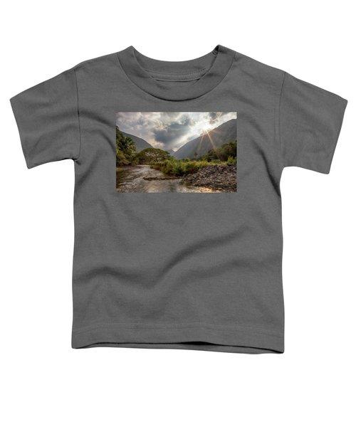 Crossing Hiilawe Stream Toddler T-Shirt