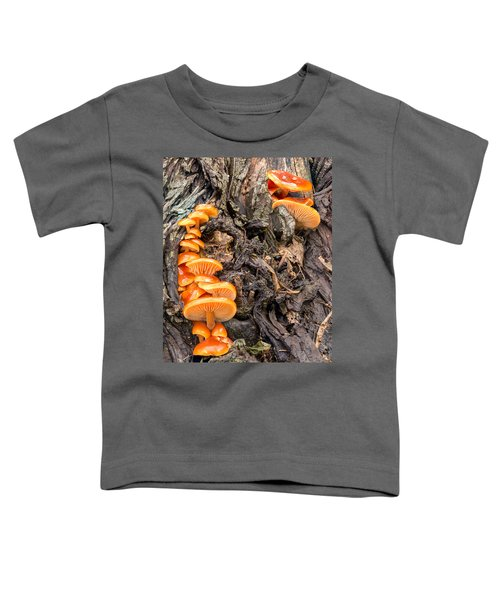 Crowded Living Toddler T-Shirt