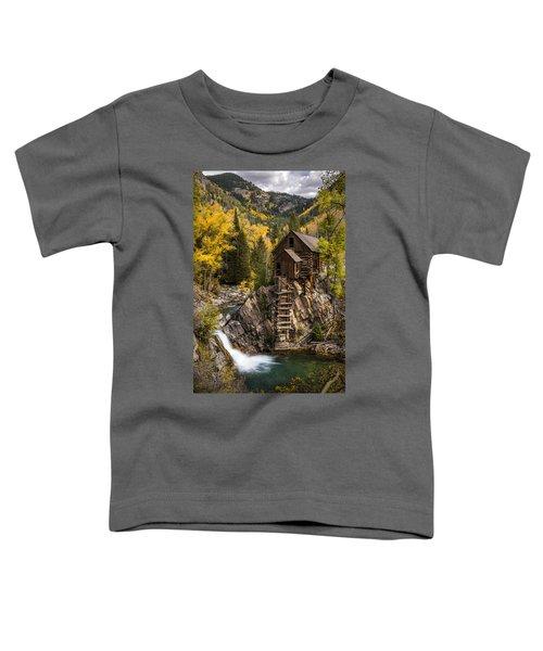 Crystal Autumn Toddler T-Shirt
