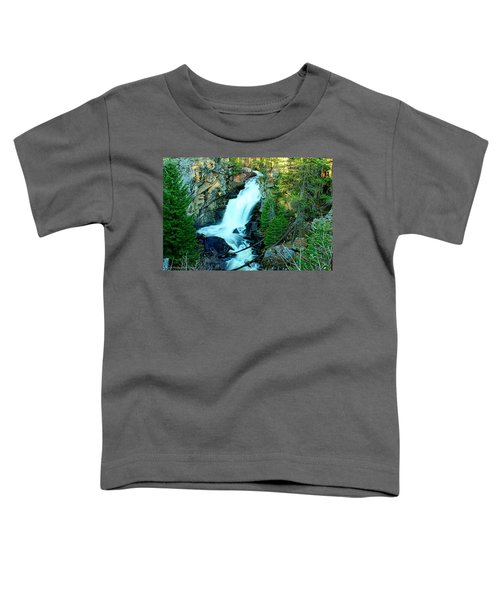 Crystal Falls , Washington Toddler T-Shirt