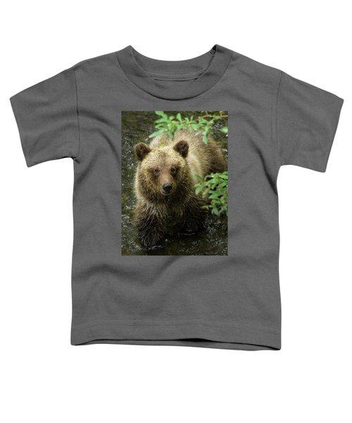 Cubby Toddler T-Shirt