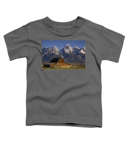 Cunningham Cabin In Front Of Grand Toddler T-Shirt