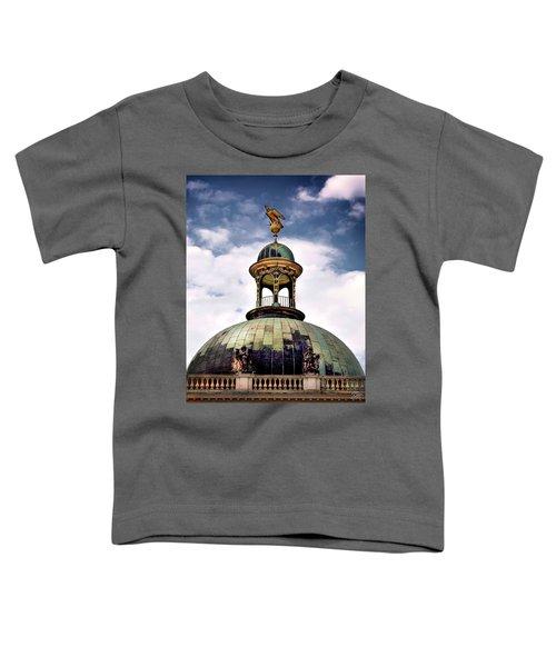 Cupola At Sans Souci Toddler T-Shirt