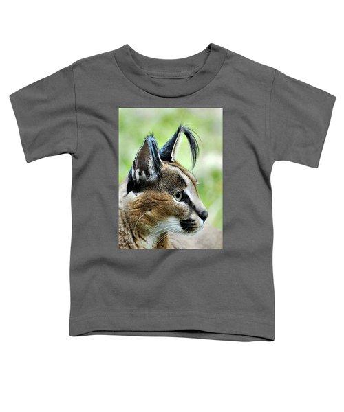 Curious Caracal Toddler T-Shirt