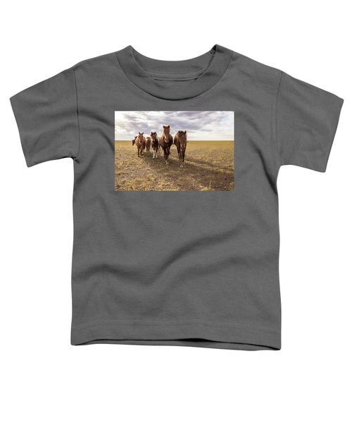 Toddler T-Shirt featuring the photograph Curious Horses by Hitendra SINKAR