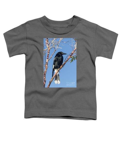 Currawong Toddler T-Shirt
