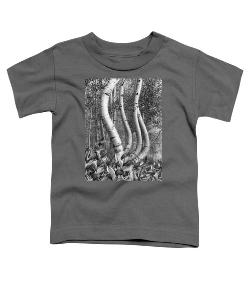 Curved Aspens Toddler T-Shirt