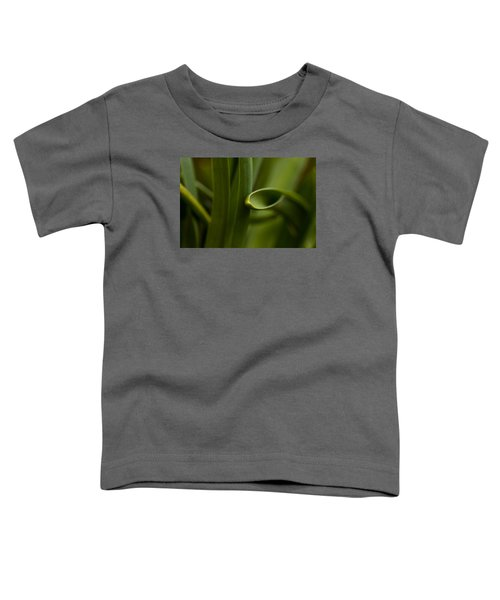 Curves Of Nature Toddler T-Shirt