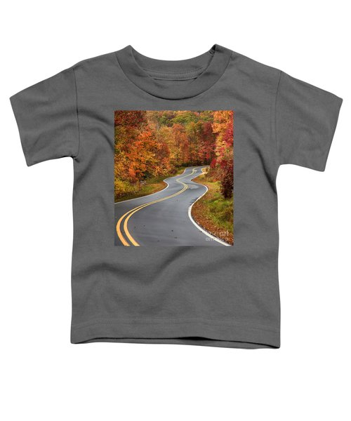 Curvy Road In The Mountains Toddler T-Shirt