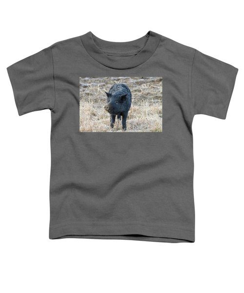 Toddler T-Shirt featuring the photograph Cute Black Pig by James BO Insogna