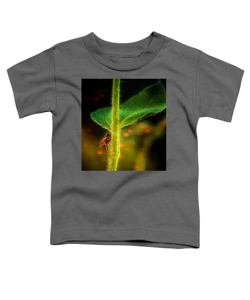 Dance Of The Wasp Toddler T-Shirt