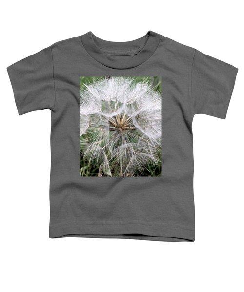 Dandelion Seed Head  Toddler T-Shirt