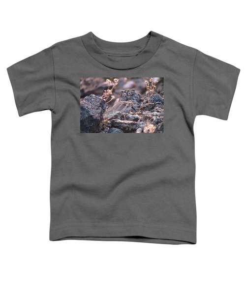 Dangerous Peekaboo  Toddler T-Shirt
