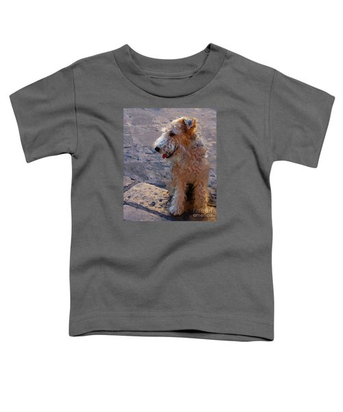 Darby Toddler T-Shirt