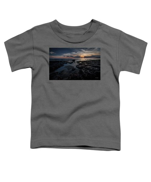 Dark  Light Toddler T-Shirt
