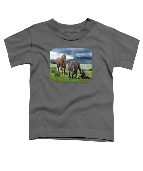 Dartmoor Ponies Toddler T-Shirt