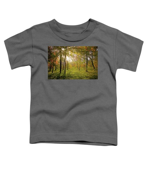 Dawn's Early Light Toddler T-Shirt