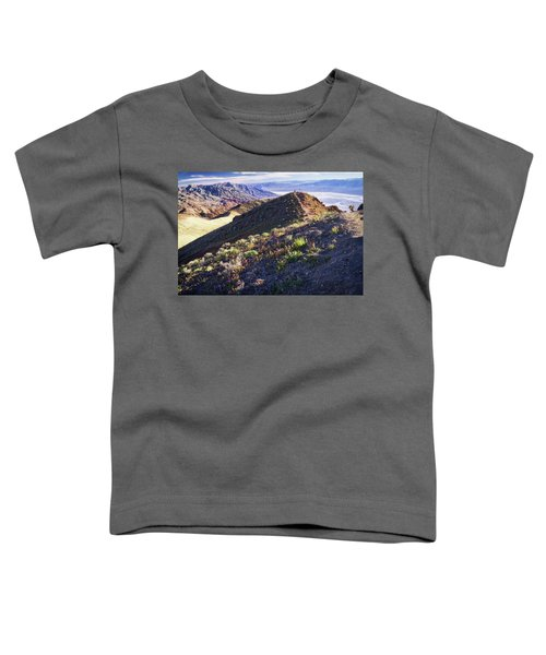 Death Valley At Spring Toddler T-Shirt