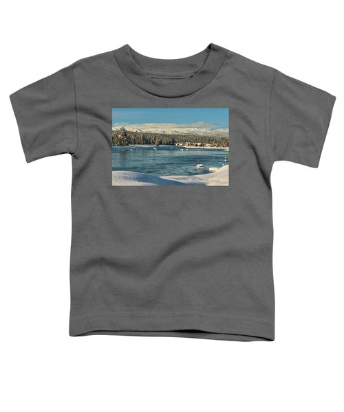 December Dream Toddler T-Shirt