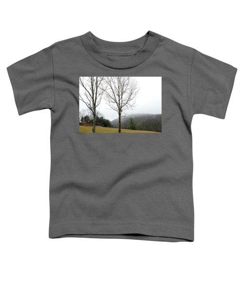 December Mist Toddler T-Shirt