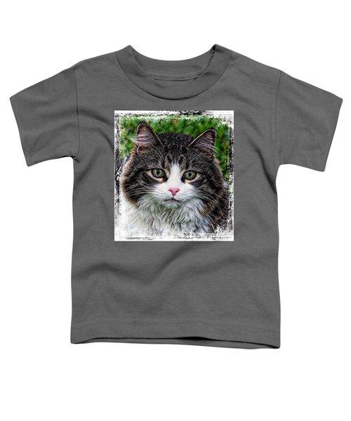 Decorative Maine Coon Cat A4122016 Toddler T-Shirt