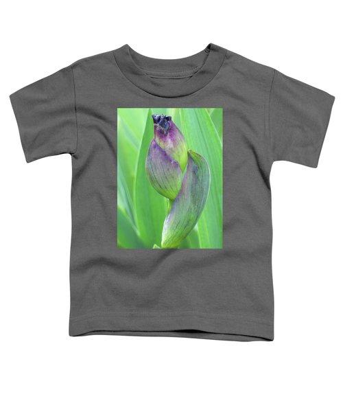 Deep Purple Promise Toddler T-Shirt