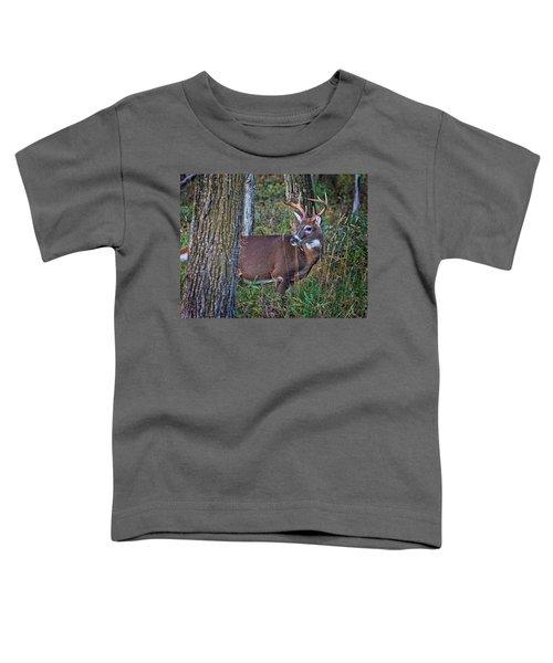 Deer In The Woods Toddler T-Shirt