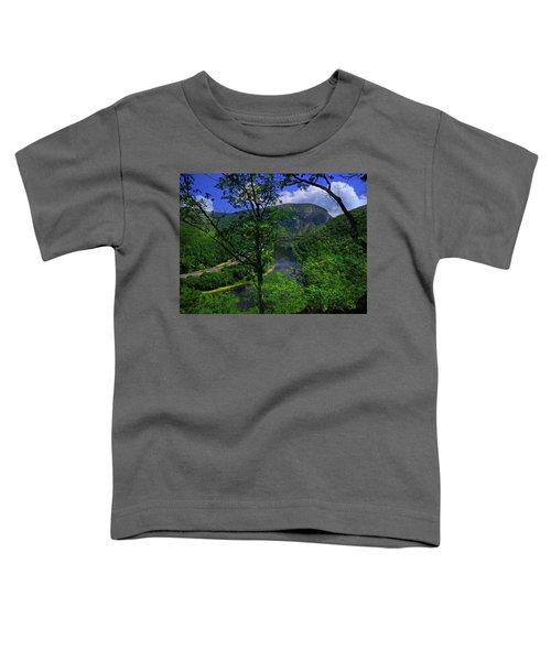 Delaware Water Gap Toddler T-Shirt