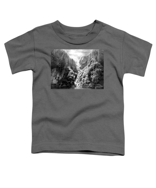 Denali National Park 2 Toddler T-Shirt