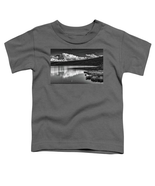 Denali Reflections In Black And White Toddler T-Shirt