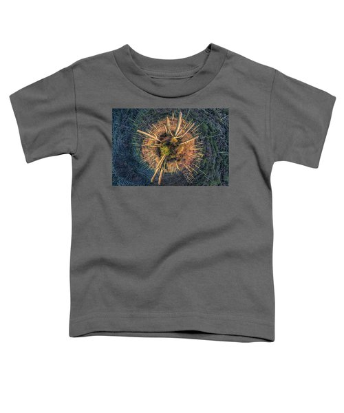 Desert Big Bang Toddler T-Shirt by Lynn Geoffroy