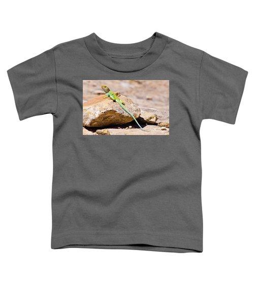 Desert Colors Toddler T-Shirt