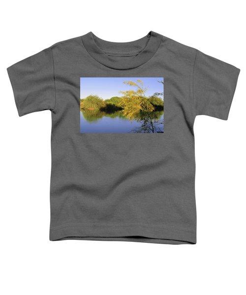 Desert Oasis Toddler T-Shirt