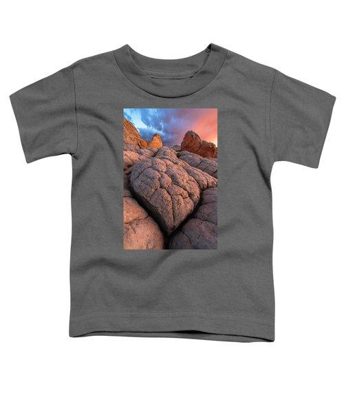 Desert Turtle Toddler T-Shirt