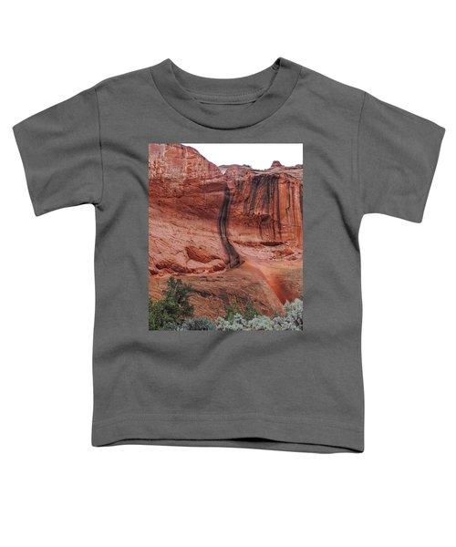 Desert Varnish Along Burr Trail Toddler T-Shirt