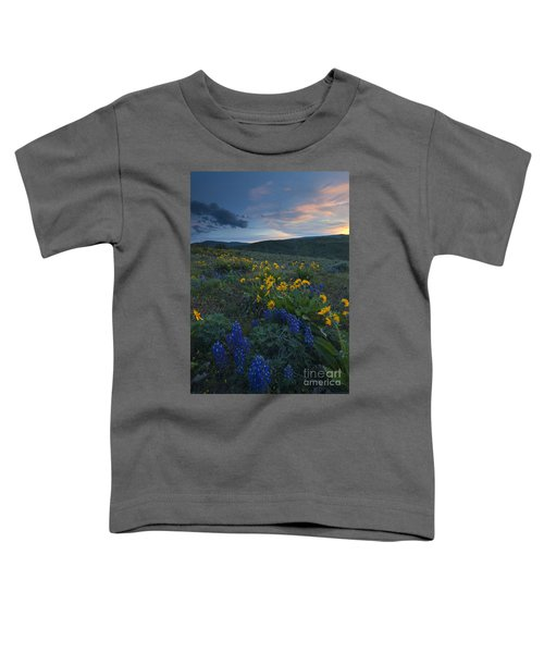 Desert Wildflower Sunset Toddler T-Shirt