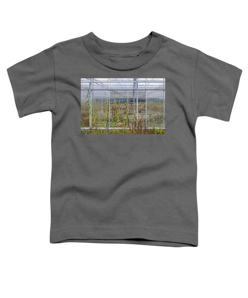 Deserted City Of Glass Toddler T-Shirt