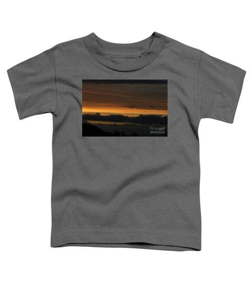 Desolate Toddler T-Shirt