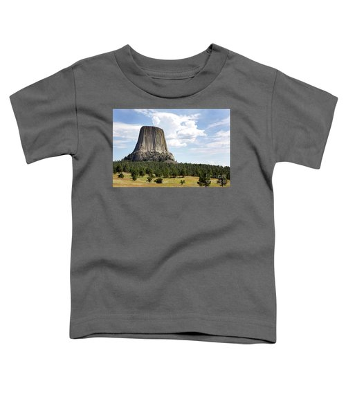 Devils Tower National Monument Toddler T-Shirt