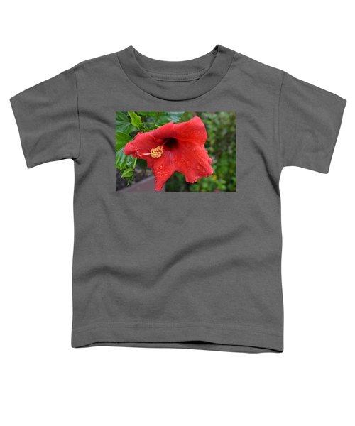 Dew On Flower Toddler T-Shirt