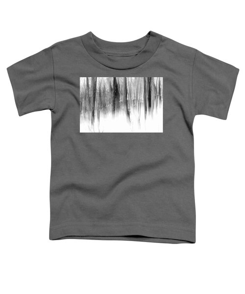 Disappearance Toddler T-Shirt