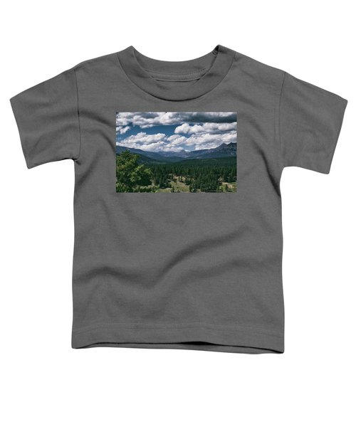 Distant Windows Toddler T-Shirt