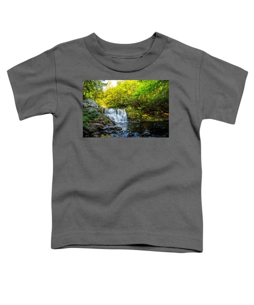Doans Falls Lower Falls Toddler T-Shirt