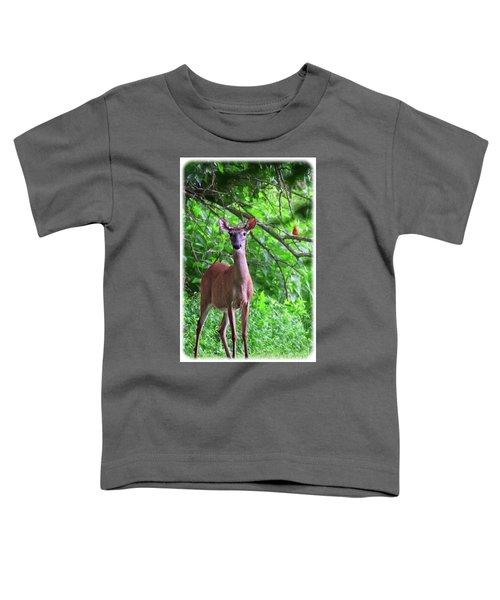 Doe And Cardinal Toddler T-Shirt